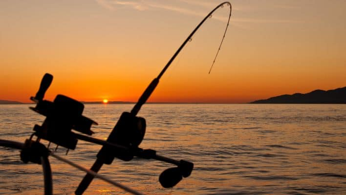 What Is the Best Time Of Day To Go Fishing?